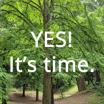 Yes! It's time. Photo of Katsura tree at Pier Park by Waterlink Web.